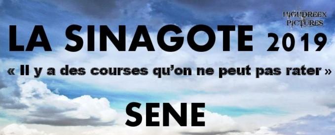 La Sinagote Sené